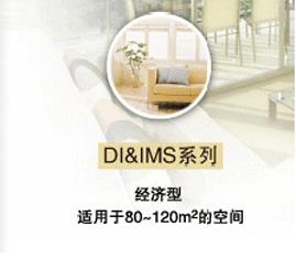 DI-IMS系统