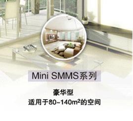 MiNi-SMMS系统